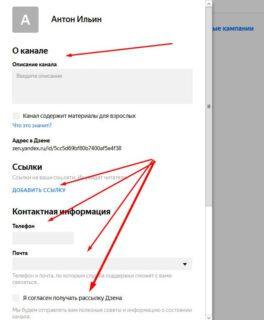 Как заработать на Яндекс Дзен даже если ты новичок в интернете